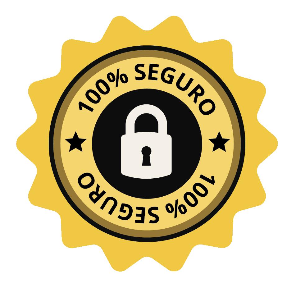 Selo de segurança Rapid SSL